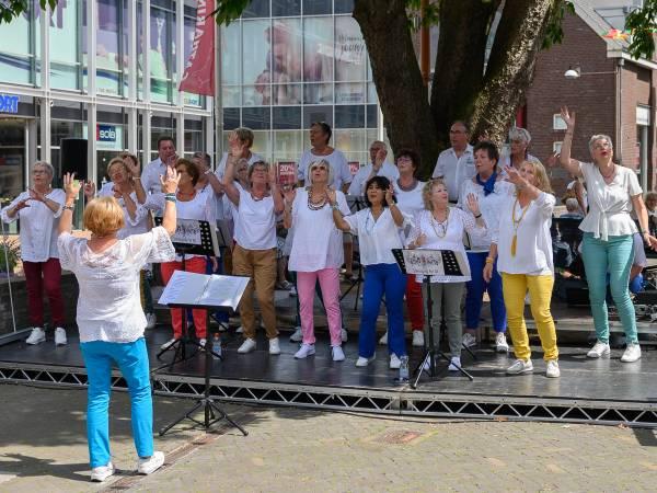 S(w)inging for all  Dordrecht